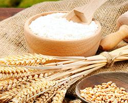 via la farina bianca per eliminare metastasi al fegato