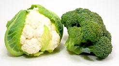 alimentazione fa sparire metastasi polmonari