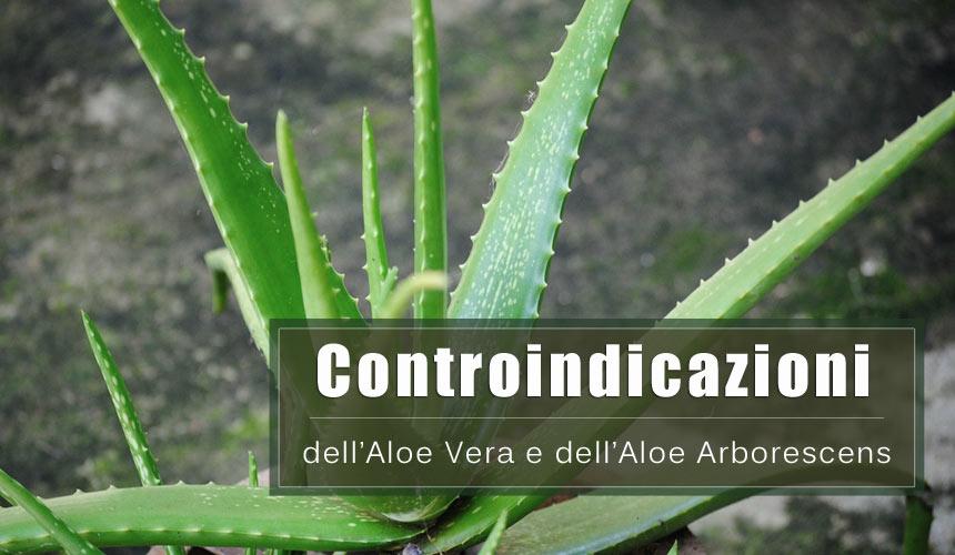 Controindicazioni dell'Aloe Vera e dell'Aloe Arborescens