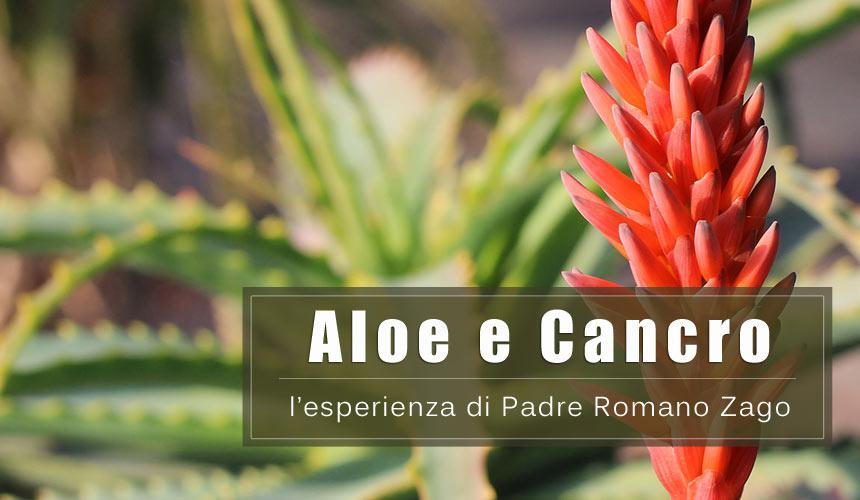 Aloe arborescens per la cura del Cancro: l'esperienza di Padre Zago