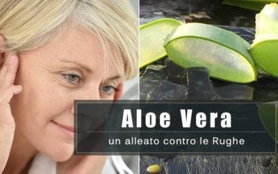 Aloe Vera gel un potente Antirughe naturale. Ecco come utilizzarlo