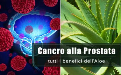 Cancro alla Prostata: i benefici dell'Aloe
