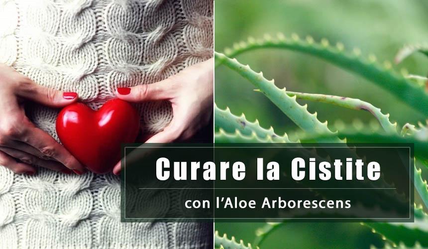 Come curare la Cistite con l'Aloe Arborescens