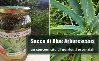 Succo di Aloe Arborescens, un concentrato di vitamine, sali minerali, aminoacidi ed antiossidanti!